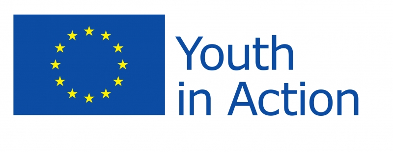 """Youth in Action"" project"